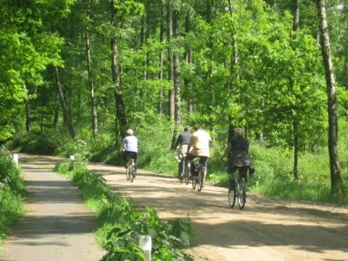 fietsers op een oude Hessenweg in Hummelo. Foto (c) Dhr. Wullink