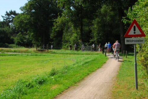 fietsvierdaagse borculo