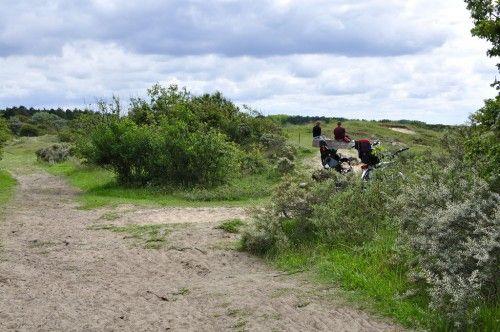 Fietsen Noord hollandse duinen