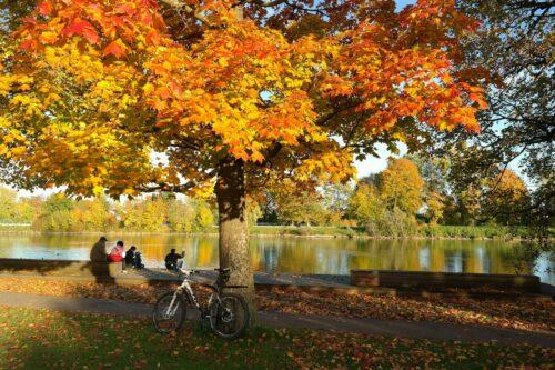 Fietsen in de herfst